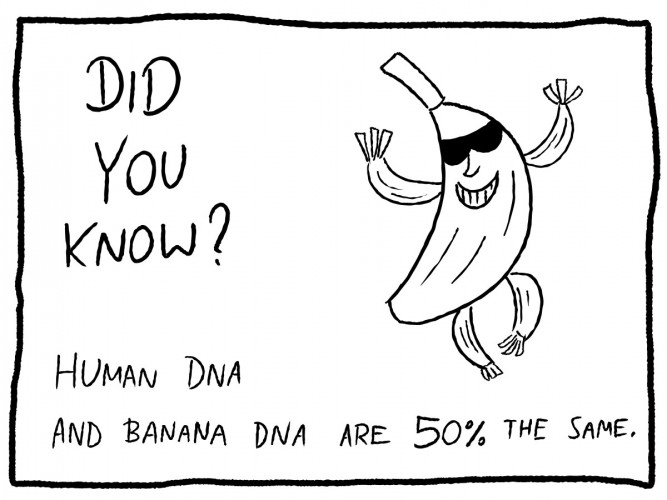 Did you know? - The human body