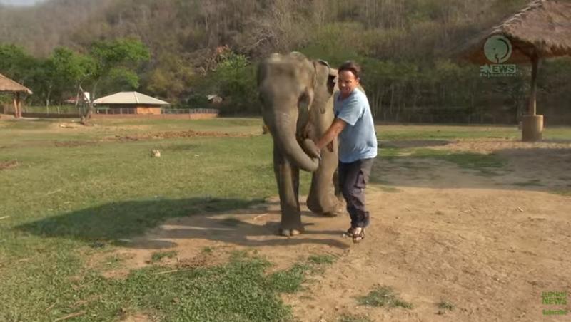 Gentle giant just loves her caretaker